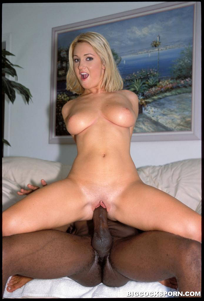 Nikki hunter gets drilled in interracial threesome 3