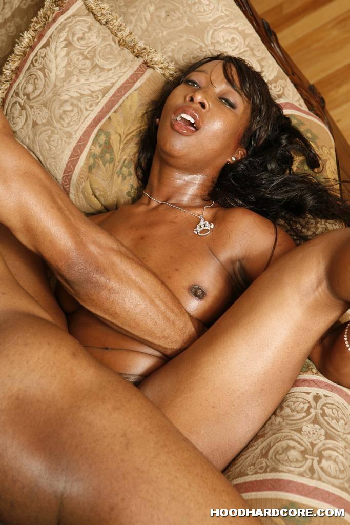 Ariel alexus black american amp anthony hardwood hungarian 3