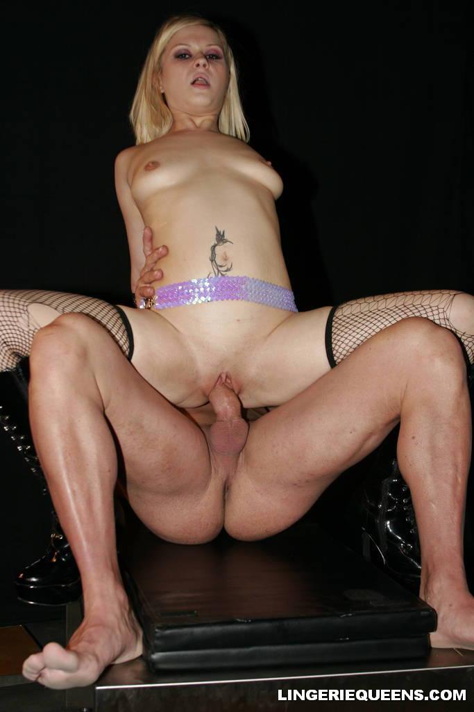 aaralyn barra porn