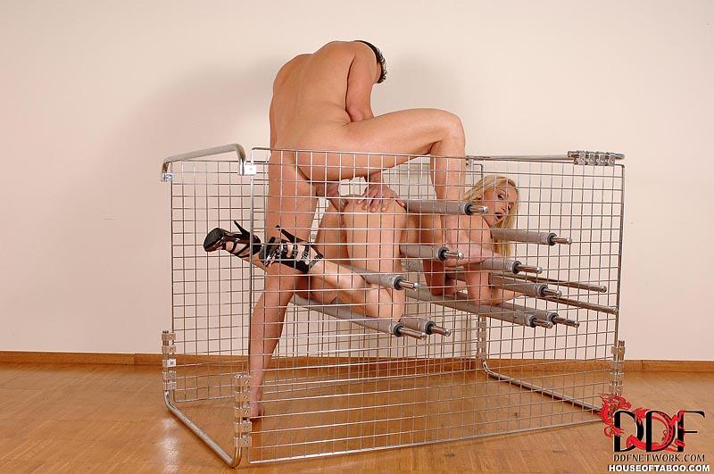Bdsm Cage