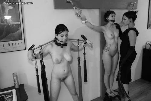 amateur pet slaves