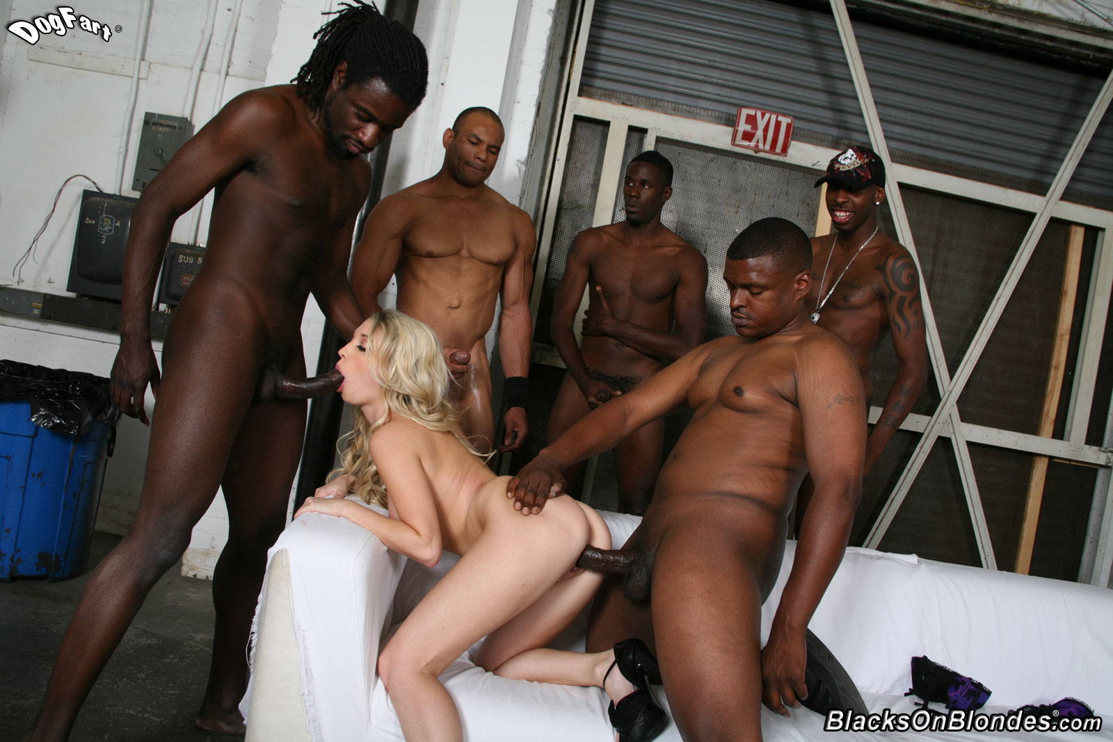 Black Porn Photo